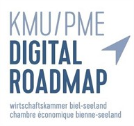 Digital Roadamp